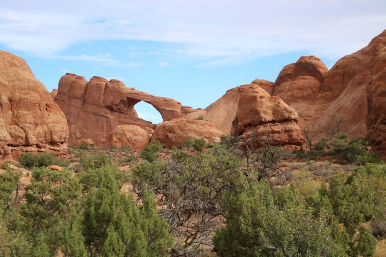26591 Arches