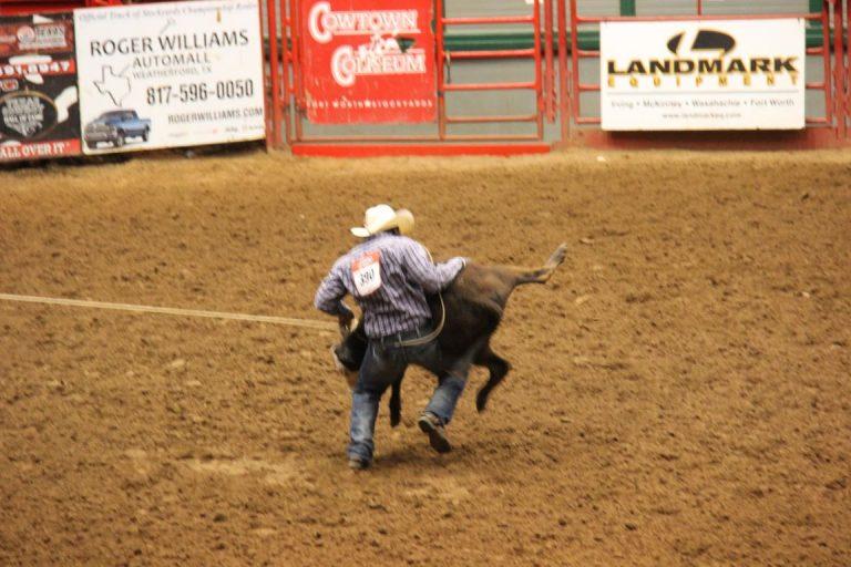 27673 Ft Worth Rodeo