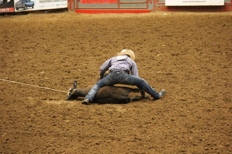 27674 Ft Worth Rodeo