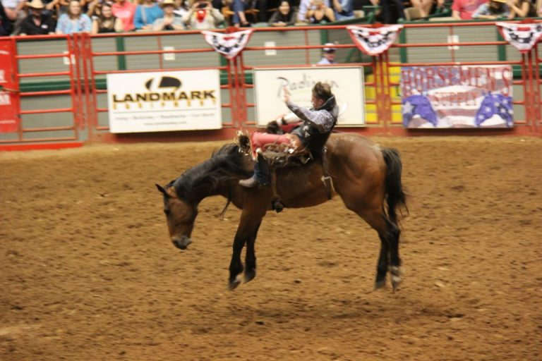 27685 Ft Worth Rodeo